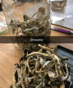 buy magic shrooms online